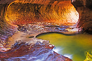 The Subway along North Creek, Zion National Park, Utah