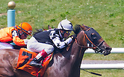 """Miracle on Broadway"" (outside) breaks his maiden at Belmont Park with Edgar Prado aboard."