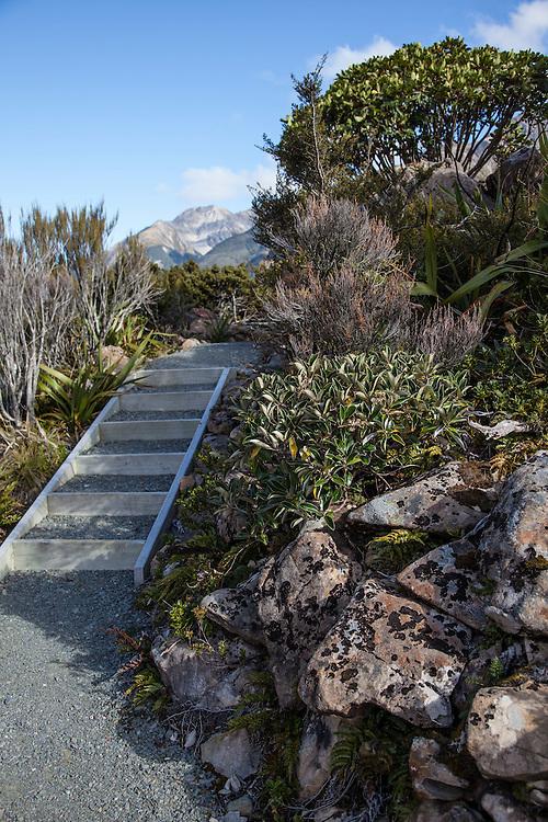Dobson Nature Walk