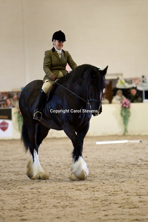 Shire Horse Society Spring Show 2011<br /> Ridden Classes