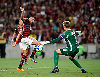 2019-11-10 Rio de Janeiro, Brazil soccer match between the teams of Flamengo and Bahia , validated by the Brazilian Football Championship .Photo by André Durão / Swe Press Photo