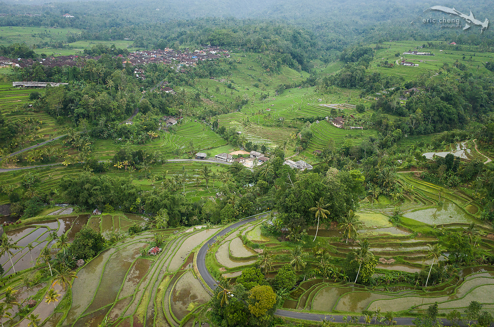 Aerial view of the Jatiluwih rice fields of Tabanan, Bali, Indonesia.