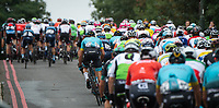 A rear view of the peloton in The Prudential RideLondon Classic. Sunday 29th July 2018<br /> <br /> Photo: Jon Buckle for Prudential RideLondon<br /> <br /> Prudential RideLondon is the world's greatest festival of cycling, involving 100,000+ cyclists - from Olympic champions to a free family fun ride - riding in events over closed roads in London and Surrey over the weekend of 28th and 29th July 2018<br /> <br /> See www.PrudentialRideLondon.co.uk for more.<br /> <br /> For further information: media@londonmarathonevents.co.uk