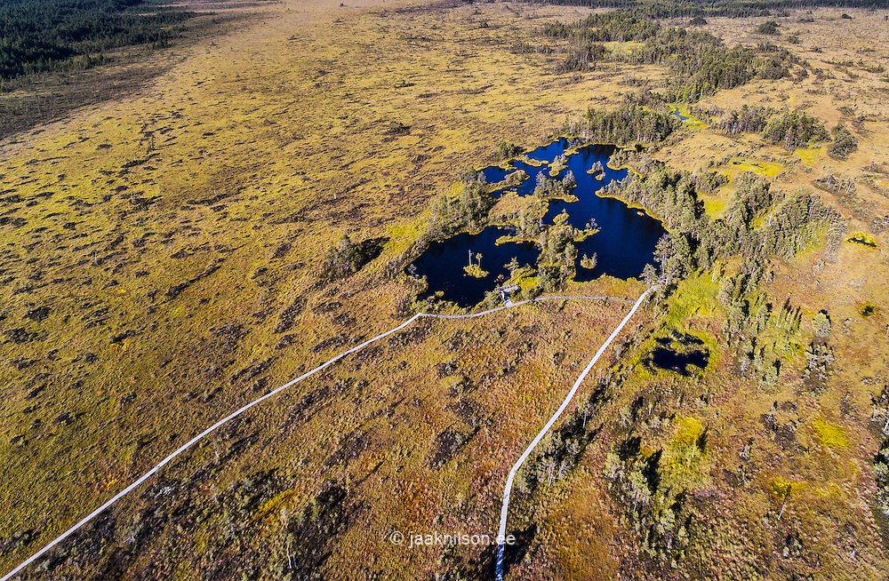 Rannametsa- Tolkuse study trail in Estonia. Aerial view. Wooden boardwalk over bog wetland. Marshland, lake, water.