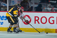 REGINA, SK - MAY 22: Ryan Moore #40 of Hamilton Bulldogs checks Adam Holwell #13 of Acadie-Bathurst Titan as he skates for the puck at the Brandt Centre on May 22, 2018 in Regina, Canada. (Photo by Marissa Baecker/CHL Images)