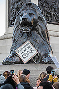 I am Woman Hear Me Roar - Women's March on London - a grassroots movement of women has organised marches around the world to assert the 'positive values that the politics of fear denies' on the first day of Donald Trump's Presidency. Their supporters include: Amnesty International, Greenpeace, ActionAid UK, Oxfam GB, The Green Party, Pride London, Unite the Union, NUS, 50:50 Parliament, Stop The War Coalition, CND.