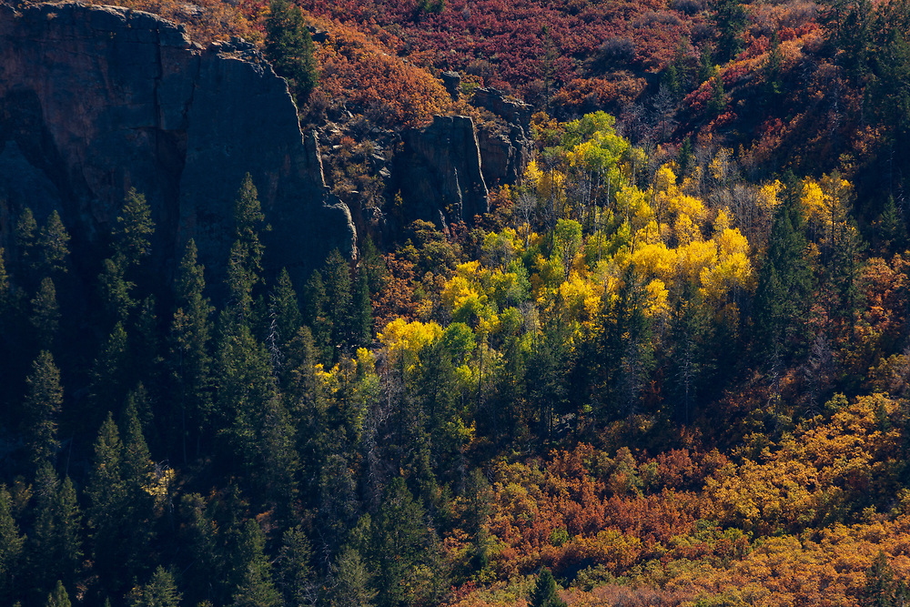 https://Duncan.co/fall-colour-black-canyon-of-the-gunnison-2