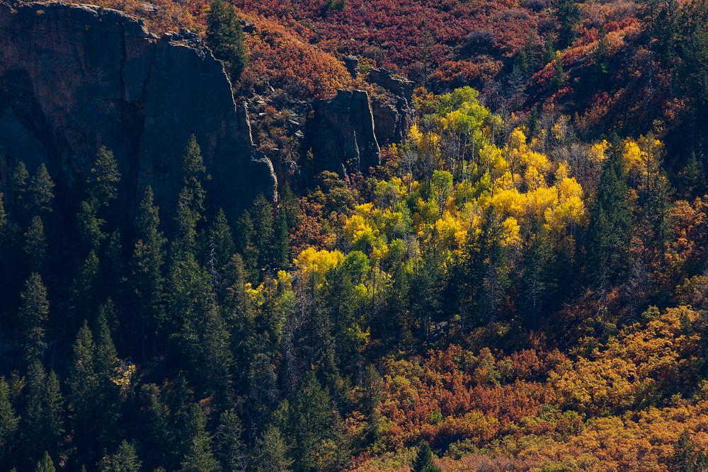 https://Duncan.co/fall-colour-black-canyon-of-the-gunnison-2
