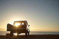 Young couple in van parked in front of ocean