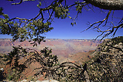 Oct. 7, 2008 -- GRAND CANYON NATIONAL PARK:Looking out to the North Rim of the Grand Canyon National Park in northern Arizona. Photo by Jack Kurtz