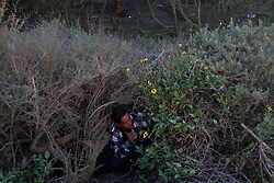 """Tijuana 2015.<br /> Juan lives in a """"ñongo"""", that's the name of a migrant """"house"""". Like every migrant he has to live close to the border to jump at the right moment to the other side. This kind of houses have to be covered of branches to be invisibles to helicopters. <br /> Juan's sons are already in the US.<br /> <br /> Juan vive a fianco della frontiera, in una capanna costruita da lui. Da due mesi si Trova a Tijuana. Prima viveva negli USA poi, per evitare che il governo gli togliesse la figlia a causa della sua condizione economica, e' tornato in Messico. Ora sua figlia è maggiorenne e due mesi fa è tornata negli USA, Juan non  ha i documenti e ogni giorno studia la frontiera per poter raggiungere la figlia."""