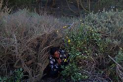 Tijuana 2015.<br /> Juan lives in a &quot;&ntilde;ongo&quot;, that's the name of a migrant &quot;house&quot;. Like every migrant he has to live close to the border to jump at the right moment to the other side. This kind of houses have to be covered of branches to be invisibles to helicopters. <br /> Juan's sons are already in the US.<br /> <br /> Juan vive a fianco della frontiera, in una capanna costruita da lui. Da due mesi si Trova a Tijuana. Prima viveva negli USA poi, per evitare che il governo gli togliesse la figlia a causa della sua condizione economica, e' tornato in Messico. Ora sua figlia &egrave; maggiorenne e due mesi fa &egrave; tornata negli USA, Juan non  ha i documenti e ogni giorno studia la frontiera per poter raggiungere la figlia.