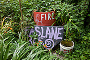 In an overgrown corner of the Faslane Peace Camp,  home-made signs and a makeshift fire bucket are in undergrowth.