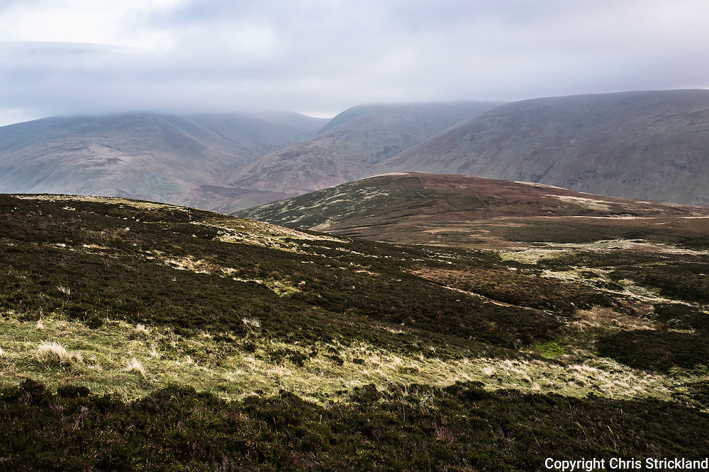 Looking south east towards Winterhope Burn, Fans Law  and Megget Reservoir from Cairn Law in the South of Scotland.