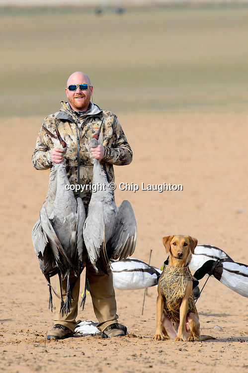 waterfowl hunting stock photo image