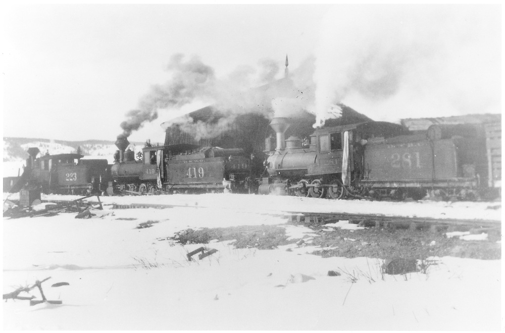 Three engines, undoubtedly part of a plow train, are standing near the covered turntable at Osier.  They are #223, #419 and #281.<br /> D&RG  Osier, CO  Taken by Wood, S. R. - 1909