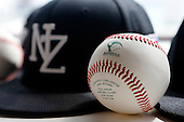 161102 Baseball NZ Partnership Announcement