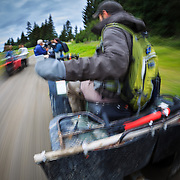 A group of photographers ride around on ATVs looking for Alaskan Coastal Brown Bears in Lake Clark National Park, Alaska.