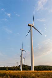 The Mars Hill wind farm in Mars Hill, Maine. The International Appalachian Trail traverses the ridge on Mars Hill.