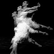 2009 Matthew Bournes Swan Lake (photocall)<br /> Sadlers Wells UK<br /> Jonathan Olliver as the swan