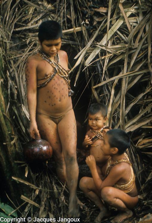 Hoti Indian girl going to fetch water, Guiana Highlands, Venezuela, South America.