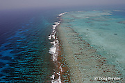 aerial view looking south down Belize Barrier Reef toward Gladden Spit, where the reef takes a right angle bend, known locally as The Elbow or Point of Reef, and where currents attract fish spawning aggregations, near Placencia, Stann Creek District, Southern Belize, Central America ( Caribbean ),  Gladden Spit and Silk Cayes Marine Reserve