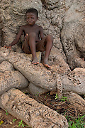 Young boy sitting on large roots, Ghana.