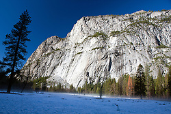 Valley floor covered in snow with evergreen trees, Yosemite National Park, California, United States of America