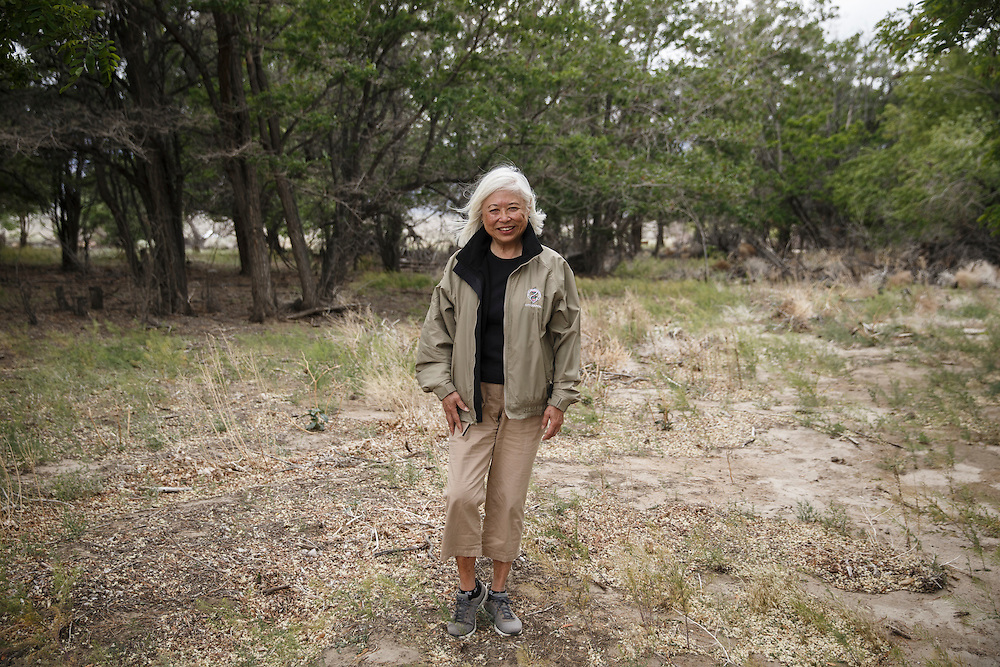 Karyl Matsumoto, an orphan who lived in the Manzanar Children's Village orphanage and now a Councilwoman for the City of South San Francisco, stands for a portrait at the site of the Children's Village at the Manzanar National Historic Site during the 47th Annual Manzanar Pilgrimage on Saturday, April 30, 2016 in the Owens Valley of Inyo County, Calif. Now a National Historic Site, the Manzanar War Relocation Center was one of ten camps where Japanese American citizens and resident Japanese aliens were interned during World War II. Photo by Patrick T. Fallon / Special to the National Parks Conservation Association