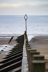Groyne on the beach at Portobello in Edinburgh, Scotland UK