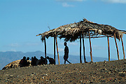 Africa. Northern Kenya. Lake Turkana. .El Molo village. Smallest tribe in Kenya. Silhouettes.CD0012