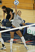 FAU Volleyball 2005
