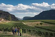 Blue Mountain vineyards, Okanagan, British Columbia, Canada