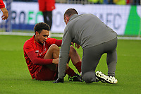 Football - 2018 / 2019 Premier League - Brighton and Hove Albion vs. Liverpool<br /> <br /> Trent Alexander-Arnold of Liverpool receives some treatment after going down during the during the pre match warm up before kick off at The Amex Stadium Brighton  <br /> <br /> COLORSPORT/SHAUN BOGGUST