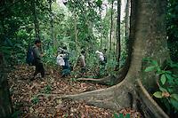 Hornbill research team led by Dr. Pilai Poonswad hiking through the rain forest in Huai Kha Khaeng Wildlife Refuge, Thailand.