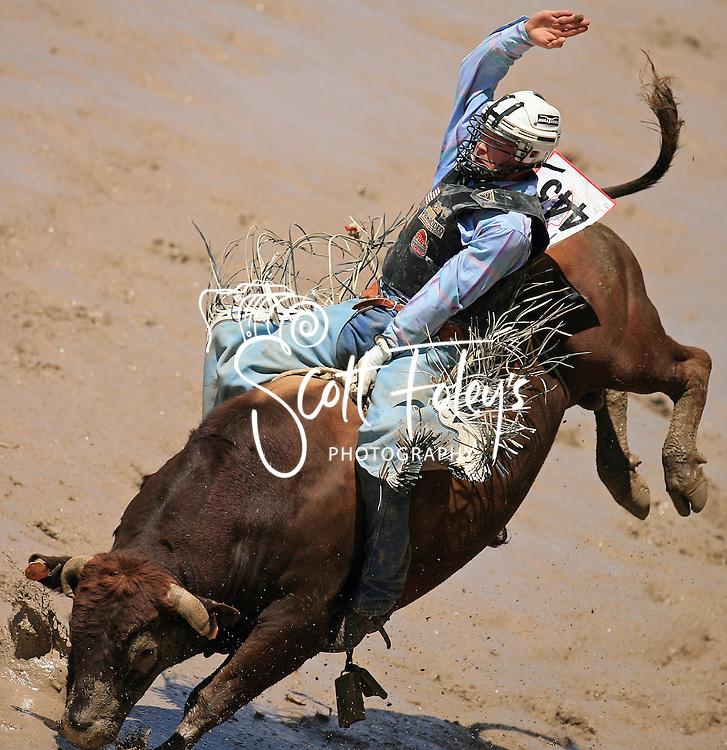 Bull Rider Shane Gordon earns an 81 point ride on 0 Lynne Boomgaarden JO, Championship Sunday, 29 July 2007, Cheyenne Frontier Days