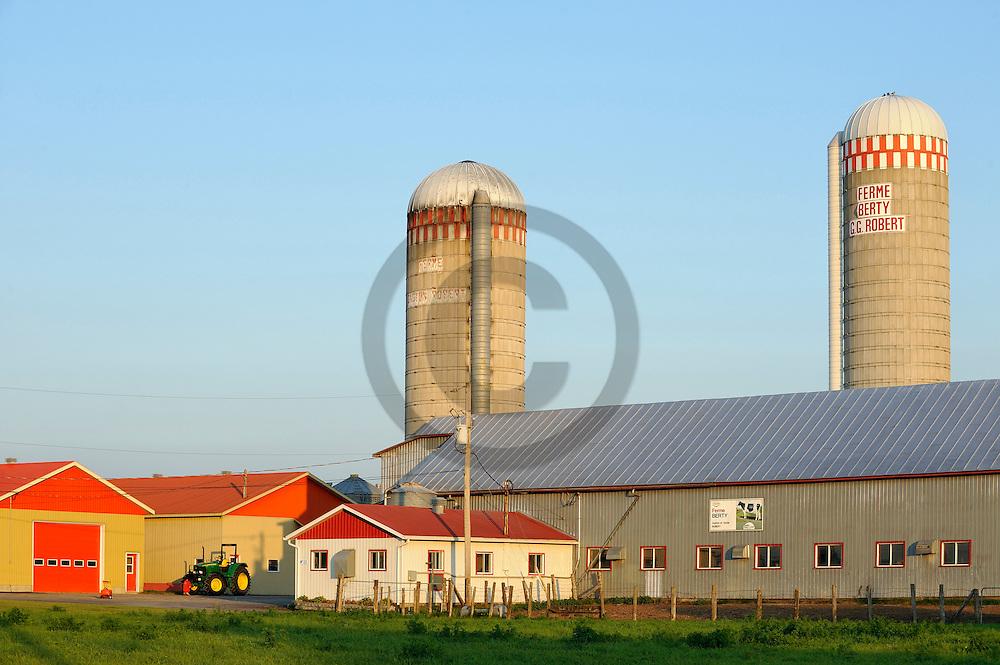 24/09/08 - SAINTE ELYSABETH - QUEBEC - CANADA - Exploitation laitiere au Canada dans la Province de Quebec - Photo Jerome CHABANNE