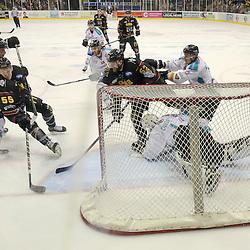 Nottingham Panthers v Belfast Giants | EIHL | 1 February2015