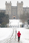 UNITED KINGDOM, Windsor: 01 February 2019. <br /> A jogger braves the cold and the snow along The Long Walk in Windsor this morning. The snow has caused a number of schools to be closed across the country today because of the adverse weather. <br /> Rick Findler / Story Picture Agency