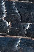 Burned Bark Detail, Plaskett Ridge, Los Padres National Forest, Big Sur, California, US