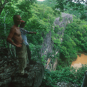 """Ankarana National Park in north-west Madagascar is a spectacular eroded limestone fortress of sharp ridges, interspersed with patches of dense tropical rainforest, deciduous forest, gorges, deep caves and underground rivers. About 100 kilometres of cave passages have been mapped within the massif. It is a small, partially vegetated plateau composed of 150-million-year-old middle Jurassic limestone, with an average annual rainfall of about 2,000 mm that has led to the erosion that has created the classic """"karst"""" topography, or locally known as """"tsingy"""".<br /> Ankarana contains one of the highest densities of primates of any forest in the world. Its dense forests supports large populations of crowned lemurs and Sanford's brown lemurs, in addition to Perrier's sifaka, northern sportive lemurs, brown mouse lemurs, fork-marked lemurs, eastern wooly lemurs, western lesser bamboo lemurs and fat-tailed dwarf lemurs, and also ring-tailed mongoose, fossa, tenrecs and Madagascar striped civet. There are almost 100 bird species, 50 reptile, including some endemic and threatened snakes and geckos, and 10 species of frogs. Inside the huge labyrinth of caves there are 14 species of bats, along with local endemic blind shrimps and the world's only cave-living crocodiles.<br /> More than 350 plant species grow in the park; the luxuriant forests around the gorges are always green and are the richest in numbers of species."""