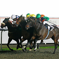 The Dandy Yank and William Carson winning the 6.00 race
