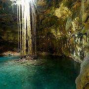 Cenote Samula..Valladolid, Yucatan..Mexico