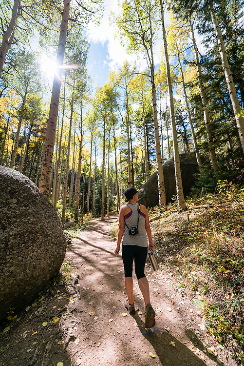 Hiking through an aspen grove on the way to Devils Head Tower, CO