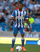 Gaetan Bong during the Sky Bet Championship match between Brighton and Hove Albion and Nottingham Forest at the American Express Community Stadium, Brighton and Hove, England on 7 August 2015.