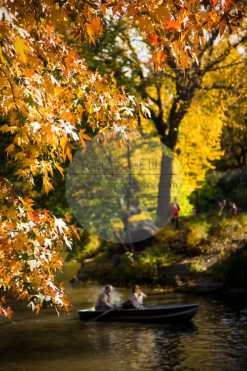Boating on the pond in Central Park in autumn in New York City.