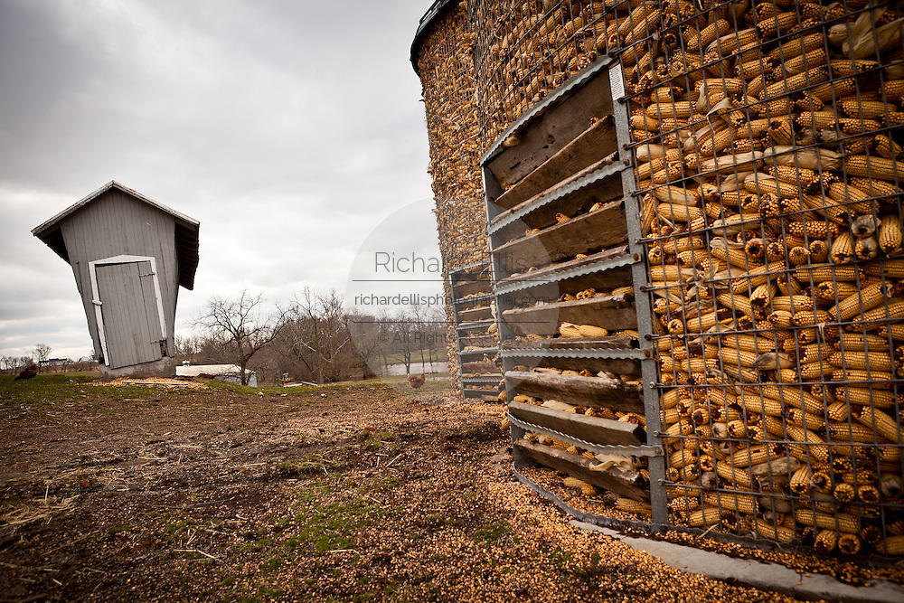 Amish corn storage bins on a farm near East Earl, PA