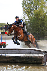 Paarden M - Minderhout 2017