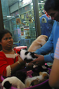A female puppy seller bargains with a customer at the weekend market.  Bangkok, Thailand.