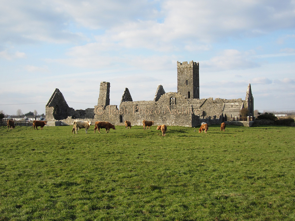 7 - Clare Abbey, Ennis. co. Mayo 1285.JPG
